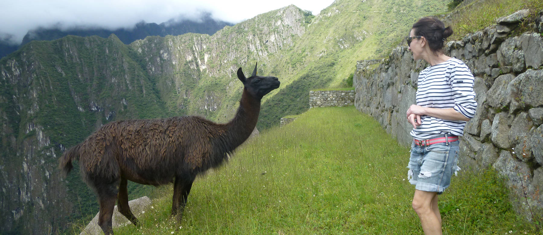 Peru hero